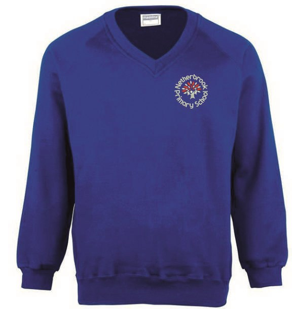 Childs Blue V Neck Sweatshirt embroidered with School logo